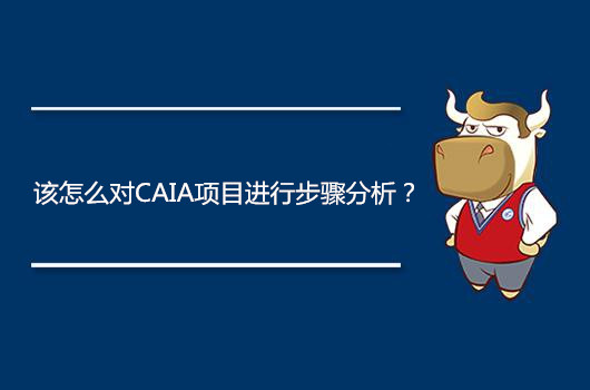 该怎么对CAIA项目进行步骤分析?